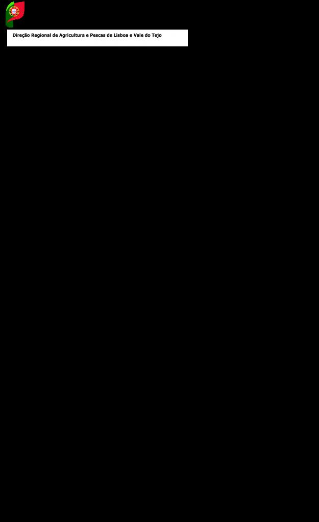 Mafra-1